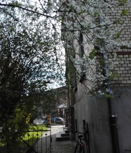 Frühling in der Schussenstrasse 1, Ravensburg